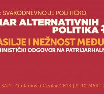 Seminar alternativnih politika